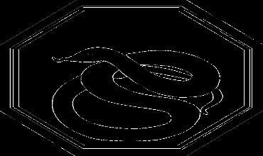 Стихии Змеи по году рождения в восточном гороскопе