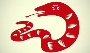 Змея – гороскоп совместимости с другими знаками восточного гороскопа