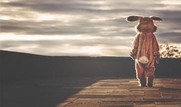 Талисманы и амулеты Зайца (Кролика)