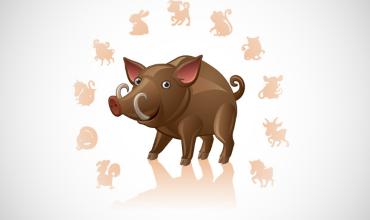 Рожденные в год Свиньи по восточному гороскопу