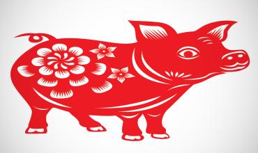 Талисманы и амулеты Свиньи