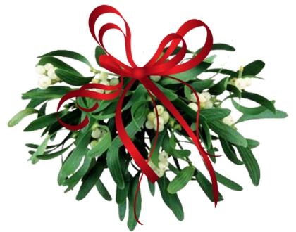 Омела – символ Рождества и талисман друидов