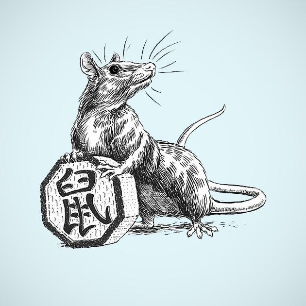 Гороскоп Крысы на 2019 год
