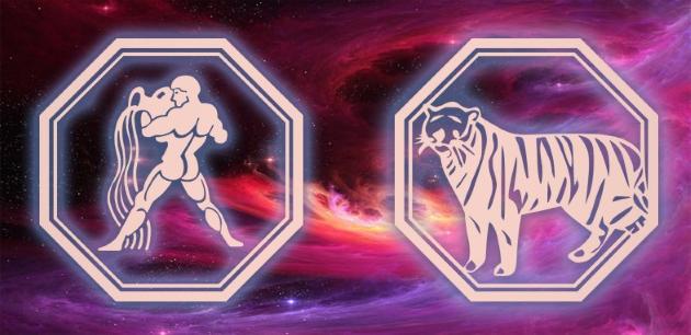 Гороскоп Водолея и Тигра