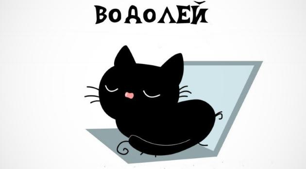 Гороскоп Водолея и Кота