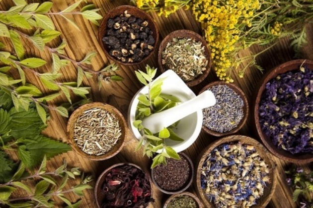 Болезни почек и мочевыводящих путей: народная медицина