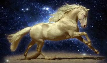 Восточный гороскоп Лошади на 2020 год для всех знаков зодиака
