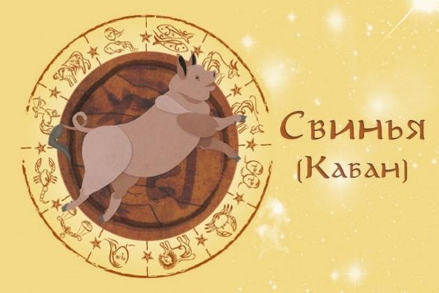 Восточный гороскоп Свиньи